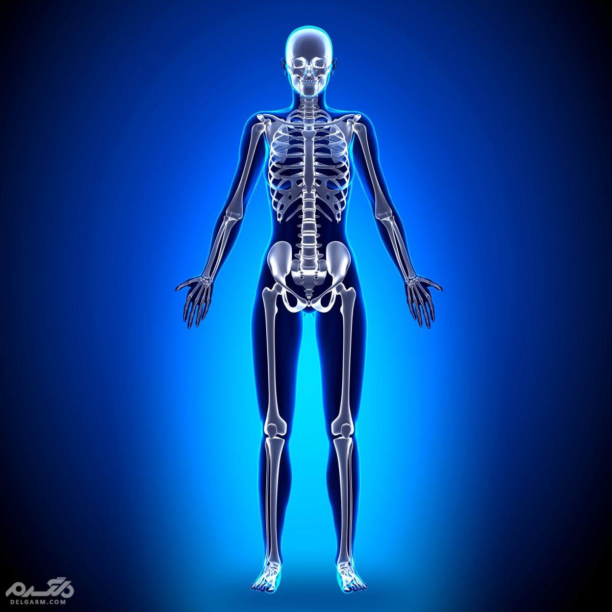 تغذیه مناسب برای تقویت استخوان های بدن