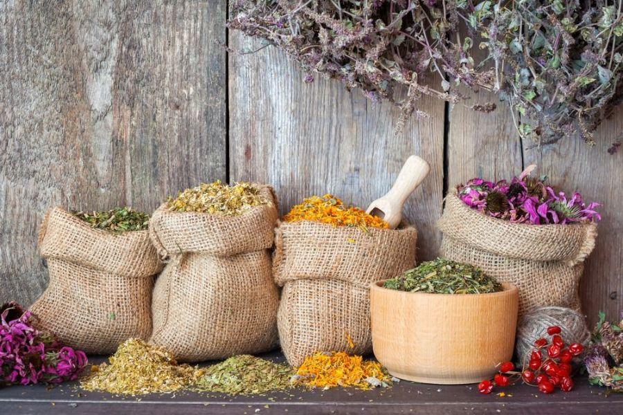 ضرورت استفاده از گیاهان دارویی برای سلامتی بدن