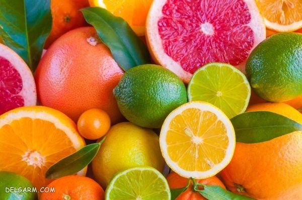 مرکبات (پرتقال، لیمو و گریپفروت)