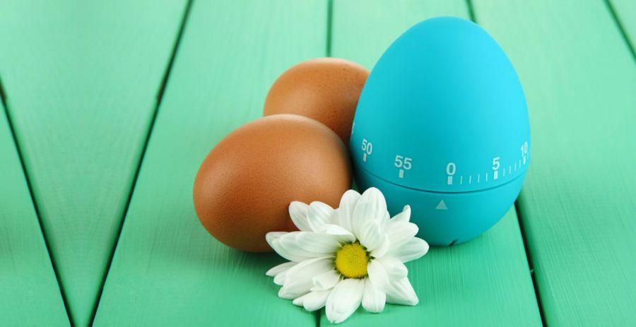 قیمت انواع تخم مرغ پز