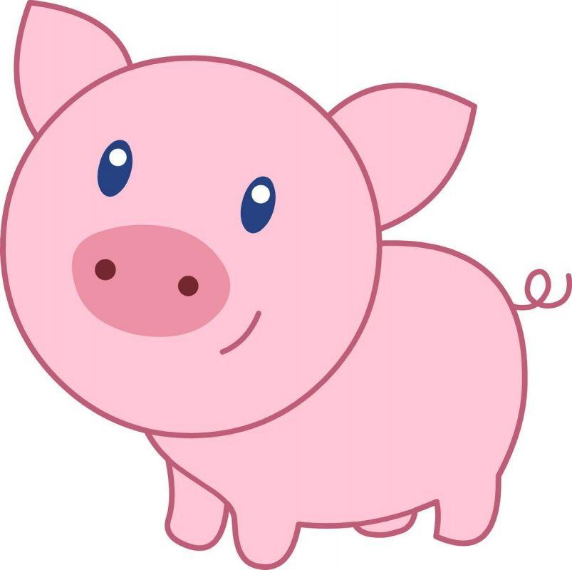 فال سال ۹۸ برای متولدین تمامی ماهها | سال خوک