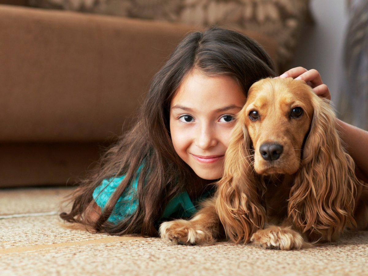 جلوگیری از افسردگی با برقراری ارتباط عاطفی با این حیوانات خانگی
