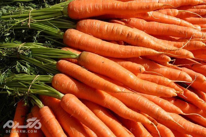 روغن هویج