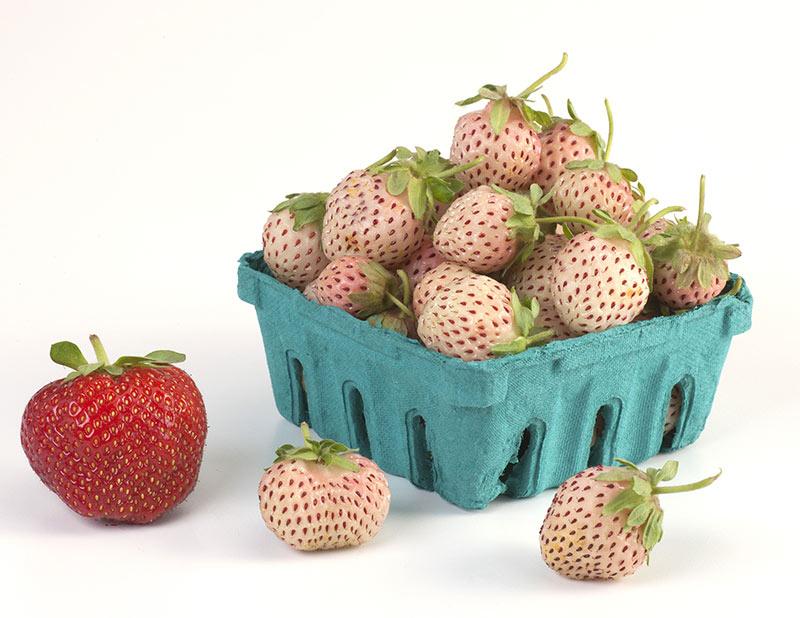 فشارخون را با توت فرنگی آناناسی کنترل کنید