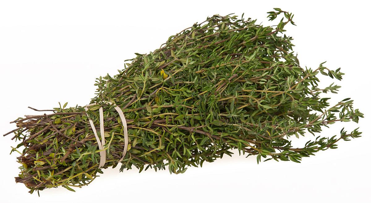 خاصیت آویشن ( thyme plant) برای سلامتی