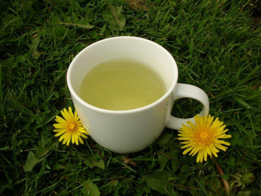 خواص چای قاصدک + طرز تهیه دمنوش گل و ریشه قاصدک