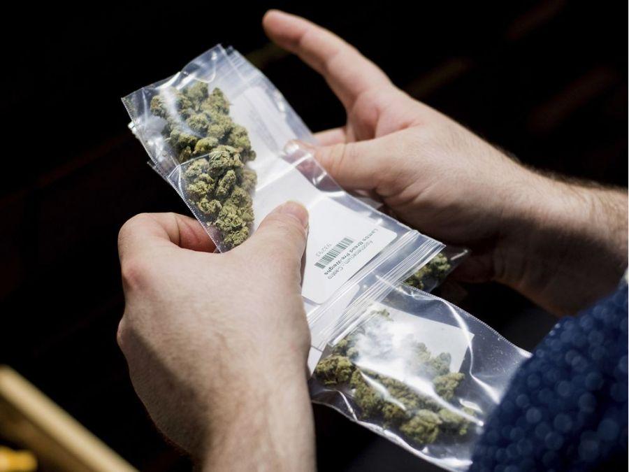 خطرات مصرف تفریحی ماریجوانا برای سلامتی