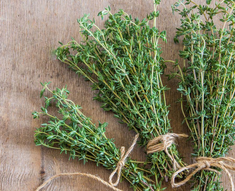 عوارض و مضرات گیاه و چای آویشن ؛ آویشن برای چه کسانی مضراست؟