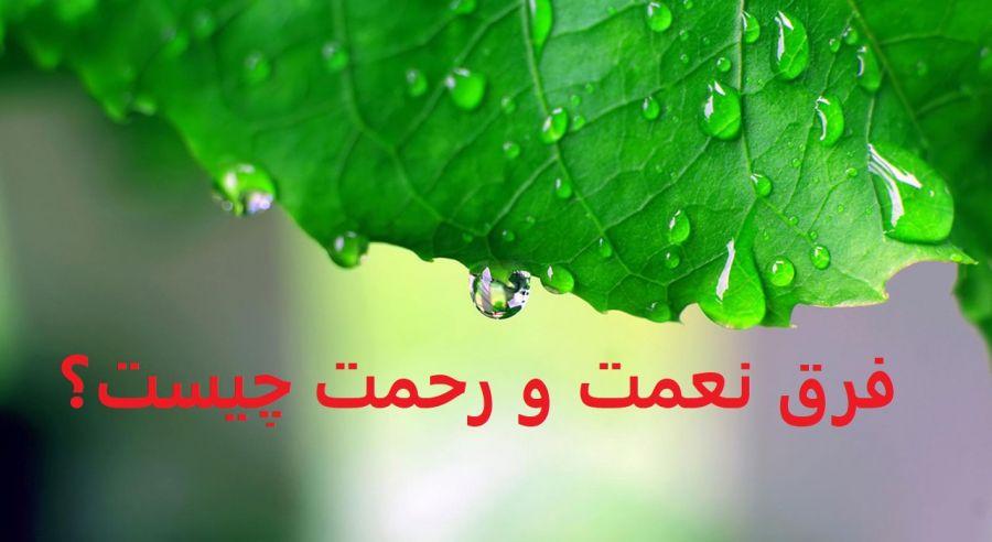 منظور از نعمت و رحمت خداوند كه در قرآن در آيههای متعددی آمده، چيست؟