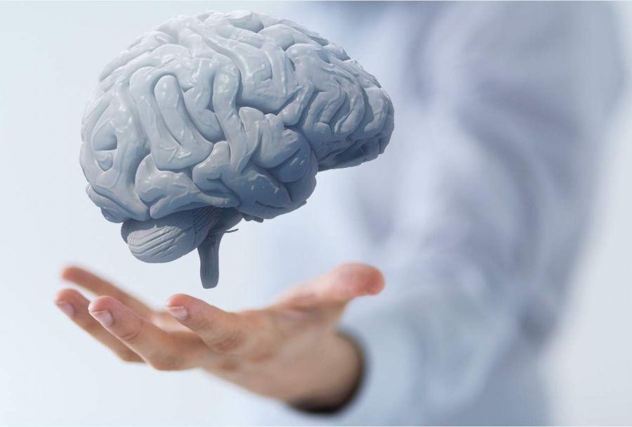 برای فعالیت بهتر مغز این کارها را انجام دهید