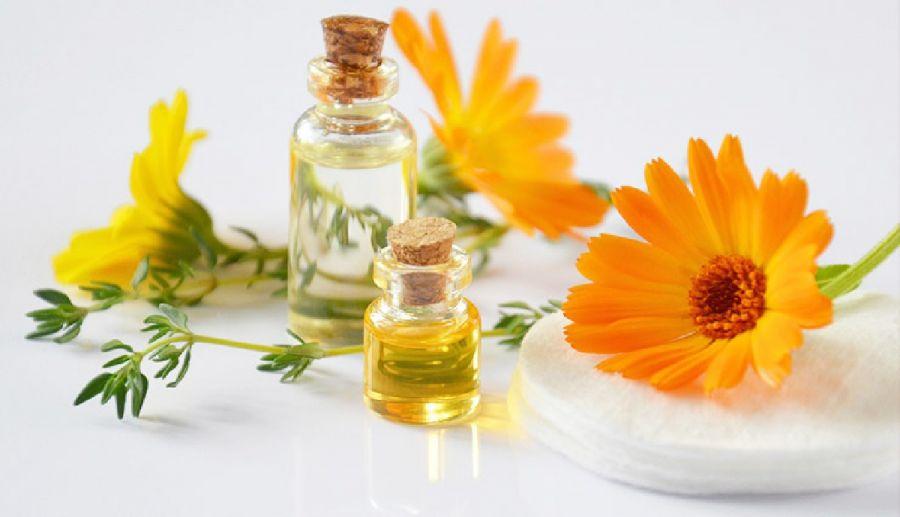 خواص اثبات شده و کاربردهای گل کالاندولا (گل همیشه بهار)