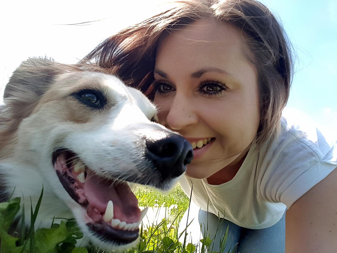 چه خوراکی هایی باعث مرگ حیوان خانگی می شود؟