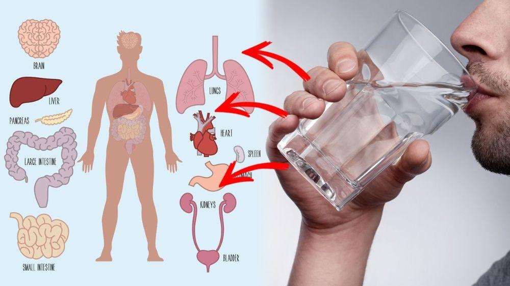 ۱۵ فایده خوردن آب گرم در اول صبح