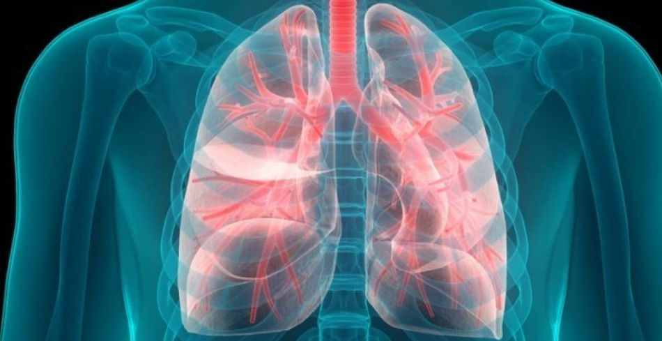 نام 15 بیماری ریه و پیشگیری عفونت آن