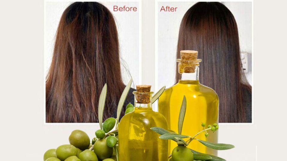 ۷ خاصیت شگفت انگیز روغن زیتون برای مو