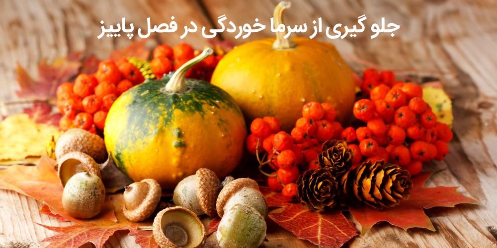 در فصل پاییز چی بخوریم که سرما نخوریم؟