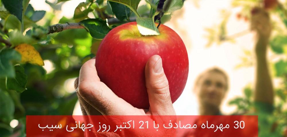 ۳۰ مهرماه مصادف با ۲۱ اکتبر روز جهانی سیب