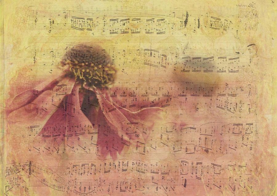 متن آهنگ ته خط از باران ( Tahe Khat   Baran)