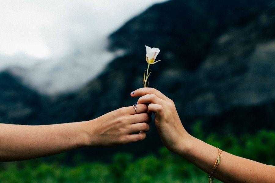 ۷۳ سخن زیبا از بزرگان درمورد  بخشش و گذشت