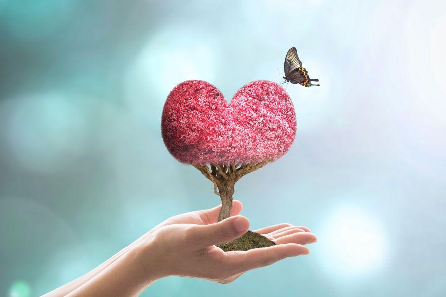 بهترین متن و جملات ناب عاشقانه انگلیسی از سخن بزرگان