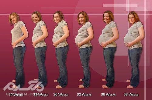 مراحل اضافه وزن در بارداری