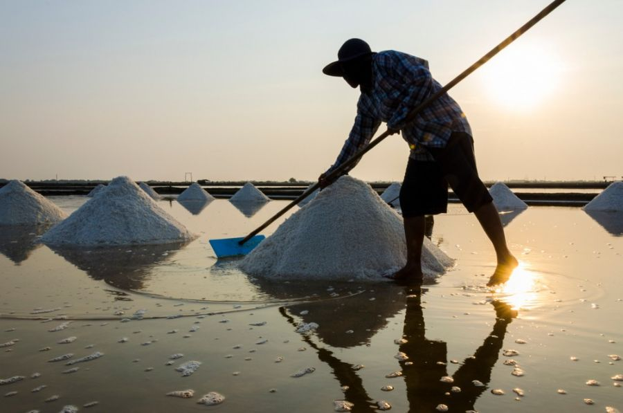 نمک دریا: ۱۷ خاصیت باورنکردنی نمک دریایی برای سلامتی