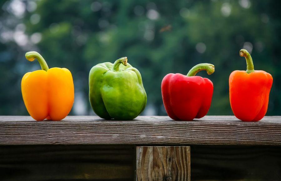 ۱۰ خاصیت باورنکردنی فلفل دلمه ای برای سلامتی
