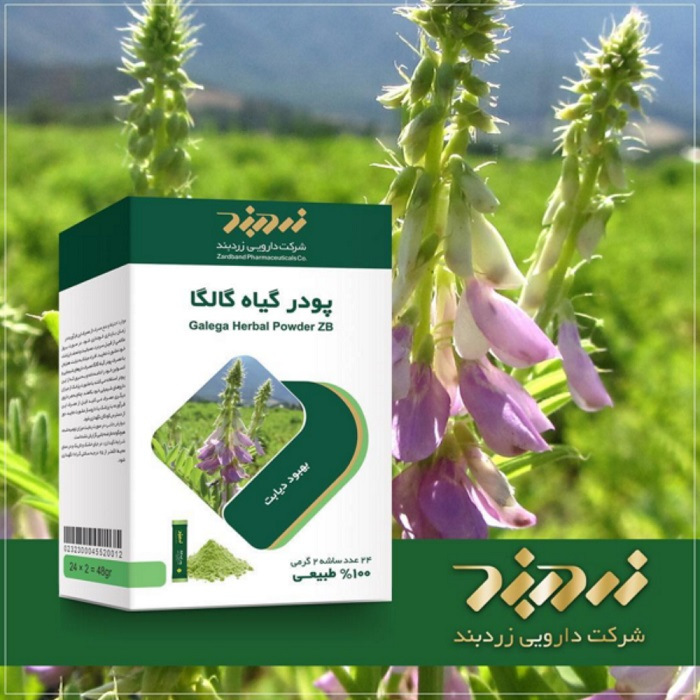 فواید مصرف پودر گیاه گالگا در درمان دیابت