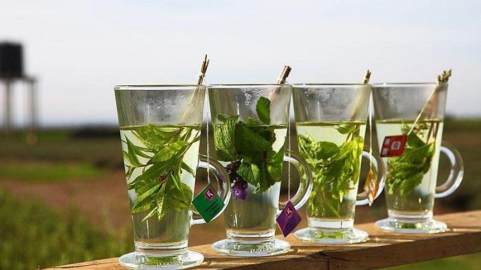 پیشگیری از یبوست با 5 دمنوش گیاهی