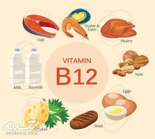 مواد غذایی حاوی ب 12