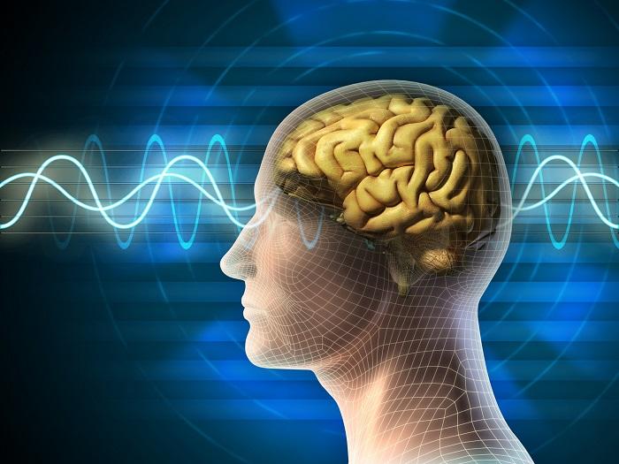 امواج مغزی و تاثیر مدیتیشن بر آنها