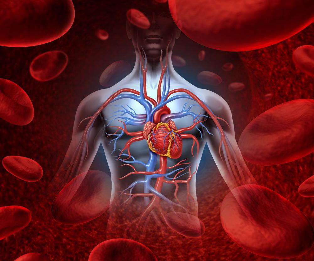 تقویت گردش خون با چند روش ساده خانگی