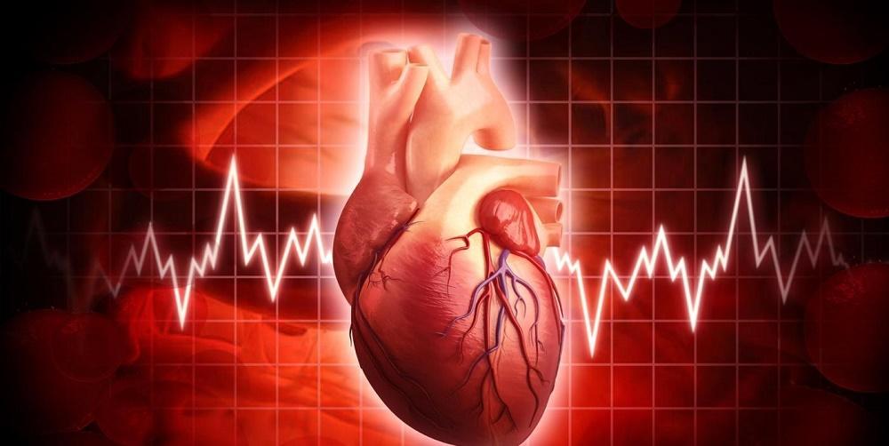 آریتمی قلب و درمان های گیاهی آن