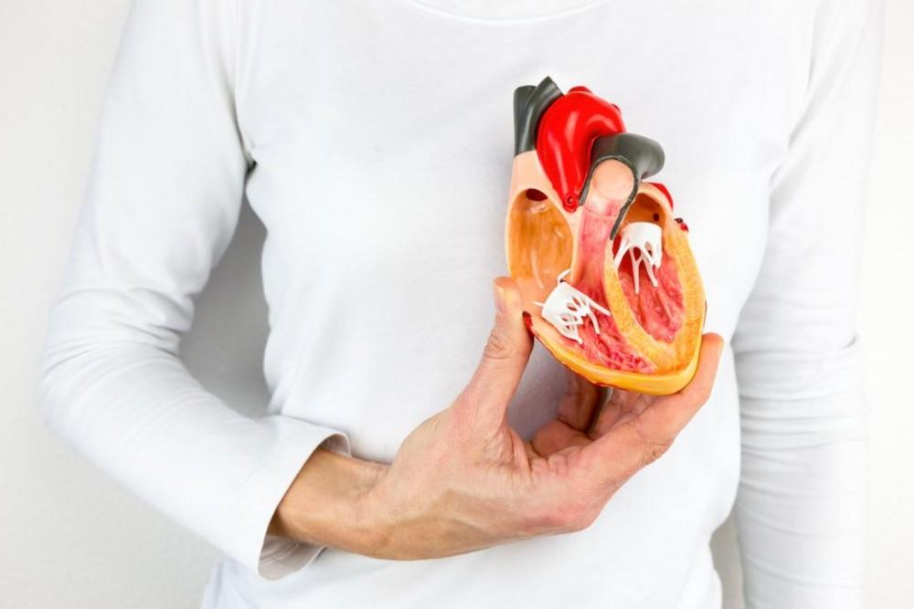 همه چیز در مورد بیماری قلبی نارسایی میترال (Mitral regurgitation)