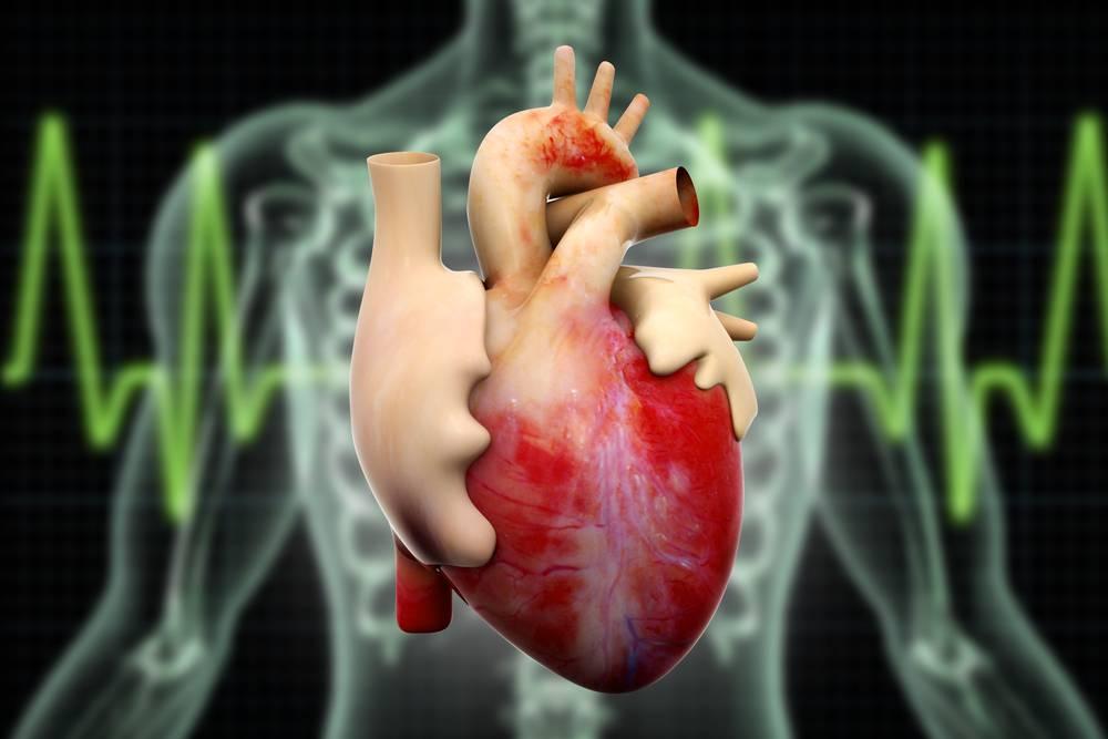 بیماری کاردیومگالی یا بزرگ شدن قلب و عوارض آن