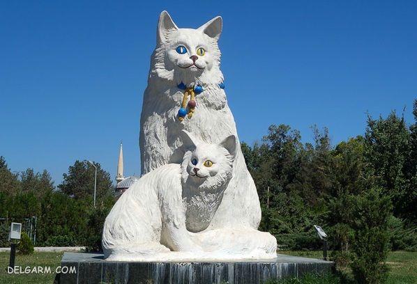 گربه های وان