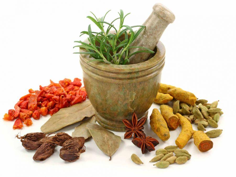 آشنایی با گیاه وشا و خواص دارویی آن