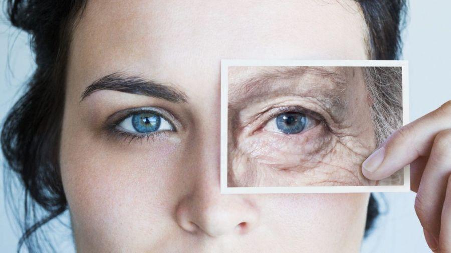 معرفی کرم دور چشم سینره مخصوص افراد بالای ۴۰ سال