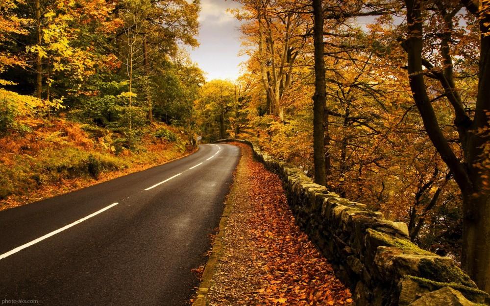 در فصل پاییز به کجای ایران سفر کنیم؟