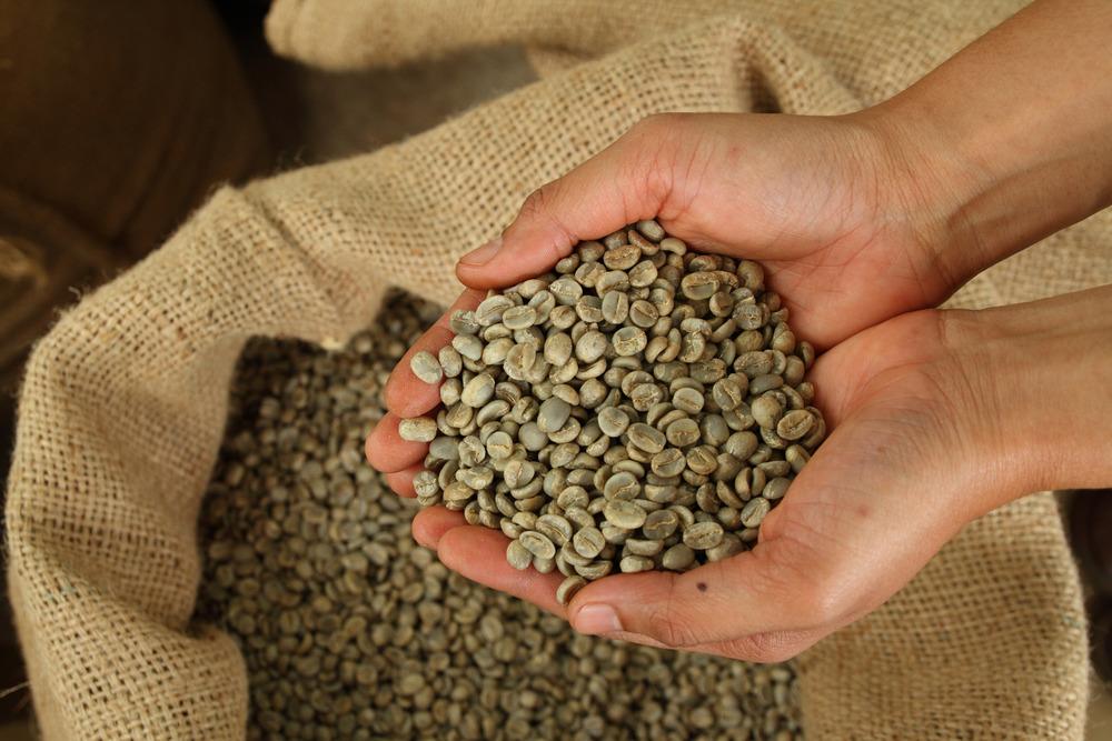 قهوه سبز / ۲۰ عارضه جبران ناپذیر قهوه سبز