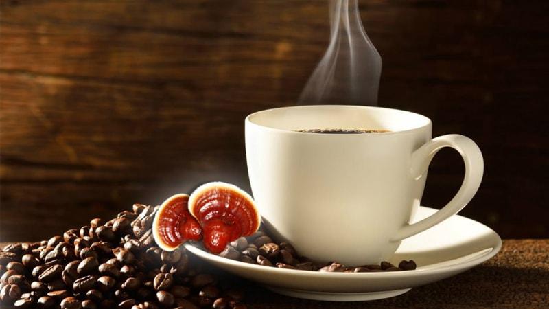 قهوه گانودرما چیست ؟ آشنایی با خواص قهوه گانودرما
