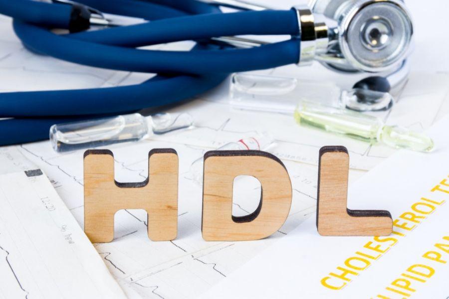 عوامل کاهش HDL در آزمایش خون چیست و چگونه افزایش میابد ؟