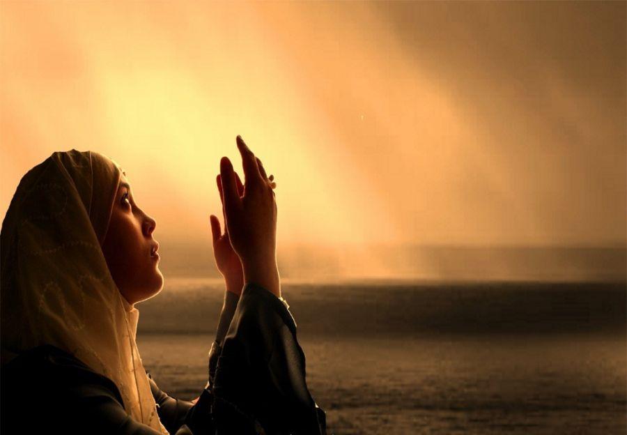 دعا برای دفع اواع حشرات موذی