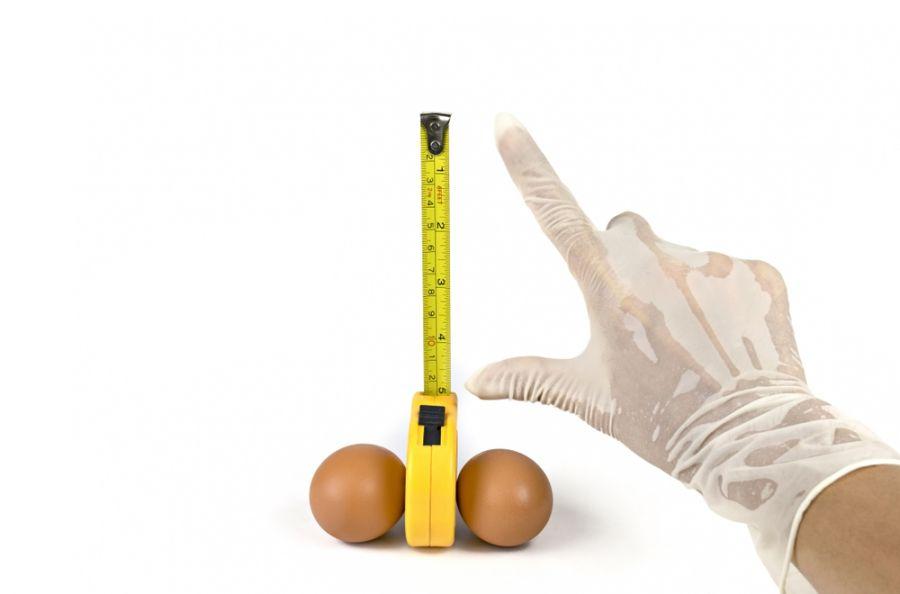 معرفی ۱۱ گیاه دارویی برای بزرگ کردن آلت تناسلی