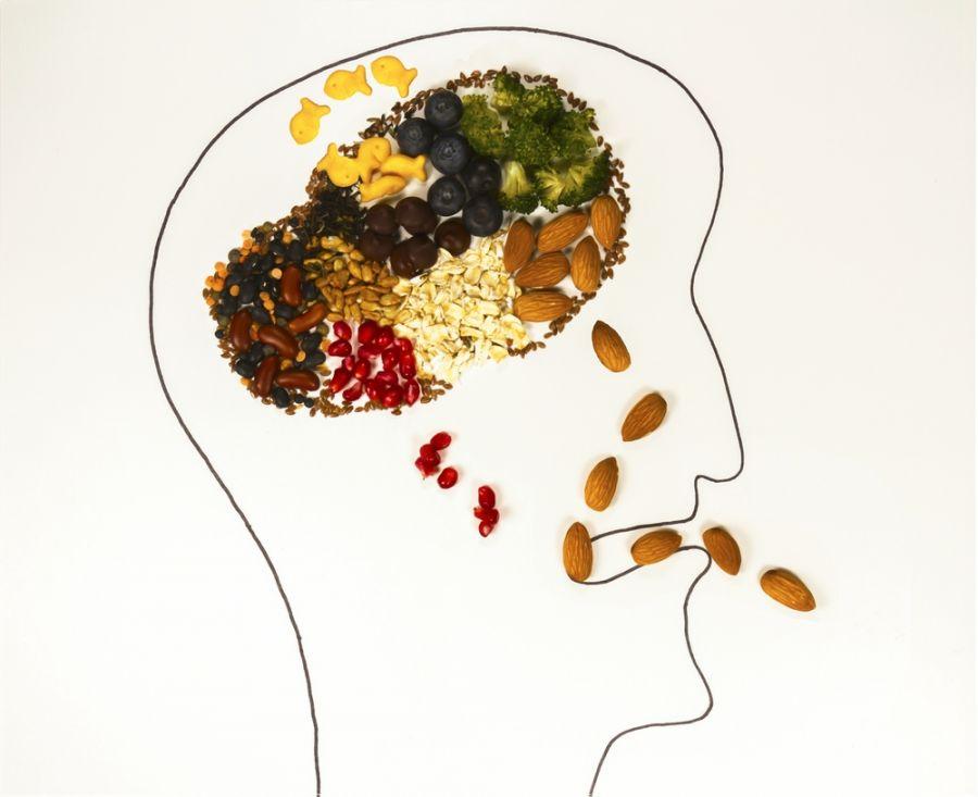 چگونه با خوراکی و مواد غذایی حافظه خود را تقویت کنیم ؟