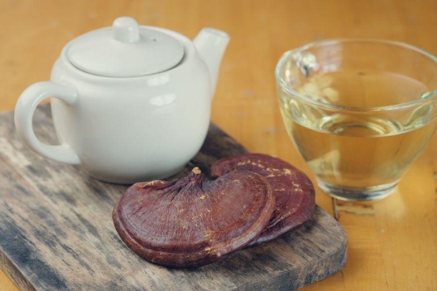 چای گانودرما چیست ؟ بررسی خواص، ارزش غذایی و دارویی چای گانودرما