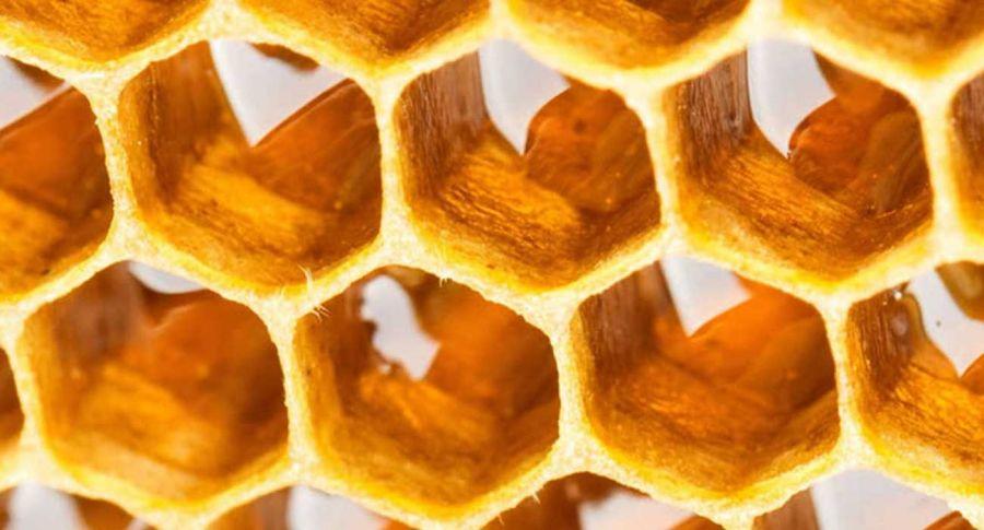 حرارت دادن عسل : چرا عسل را حرارت میدهند ؟