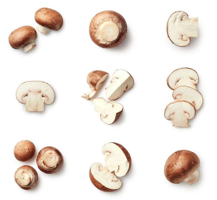 مصرف قارچ در بارداری : خواص خوردن قارچ در دوران بارداری