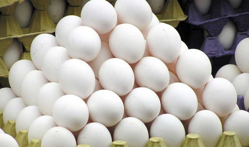 کاهش قیمت تخم مرغ / دیماه ۹۷