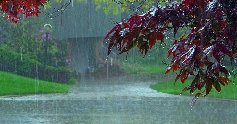 هشدار هواشناسی : وزش باد شدید و بارش باران و برف